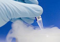 Biomedical Measurement and Control